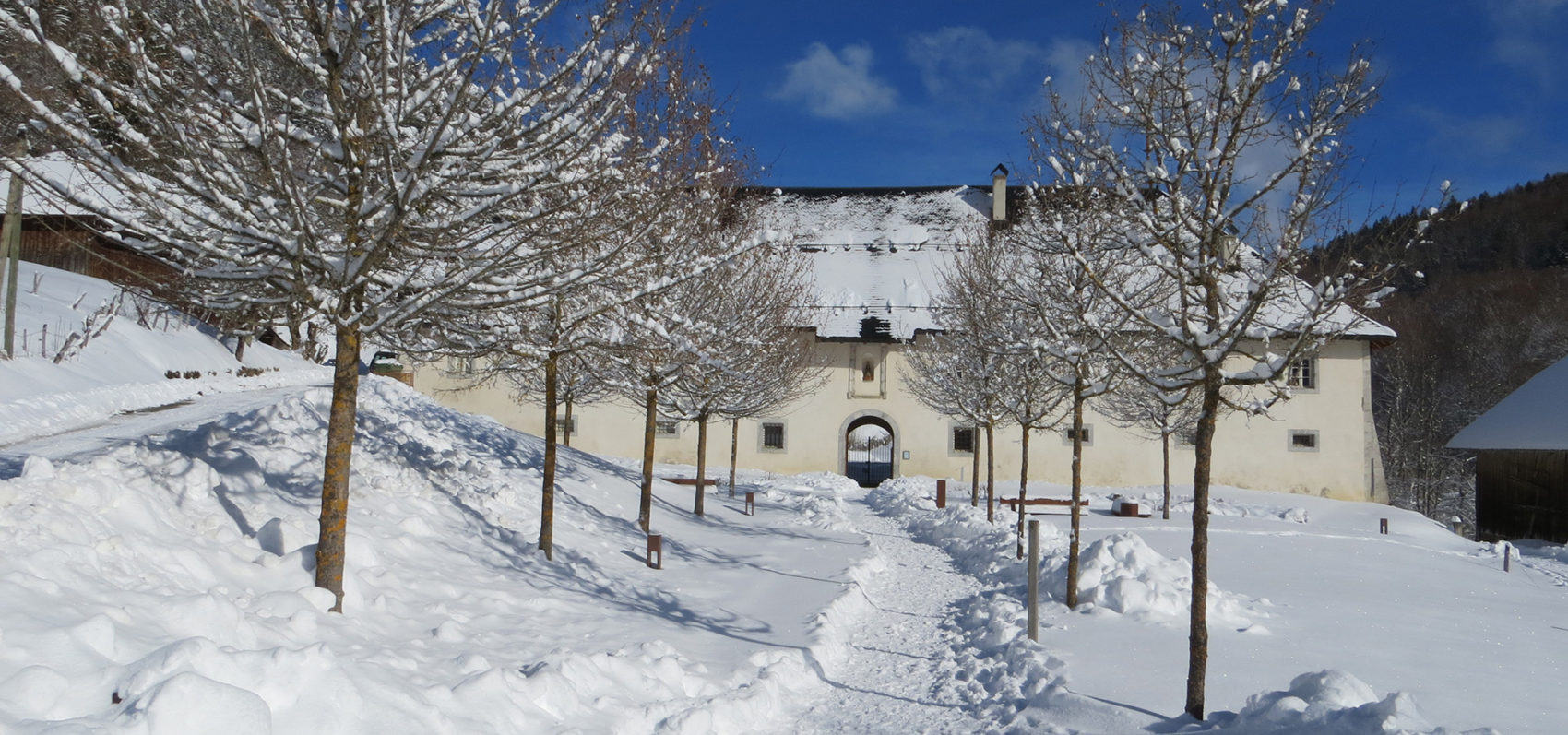 Chartreuse Aillon neige hiver